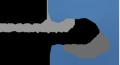 ЗАПРОВАДЖЕННЯ СПЕЦКУРСУ «ПАТРІОТИЧНЕ ВИХОВАННЯ МОЛОДІ НА ТРАДИЦІЯХ НАЦІОНАЛЬНОЇ ФІЗИЧНОЇ КУЛЬТУРИ» У ПРОЦЕС ФАХОВОЇ ПІДГОТОВКИ МАЙБУТНЬОГО ВЧИТЕЛЯ